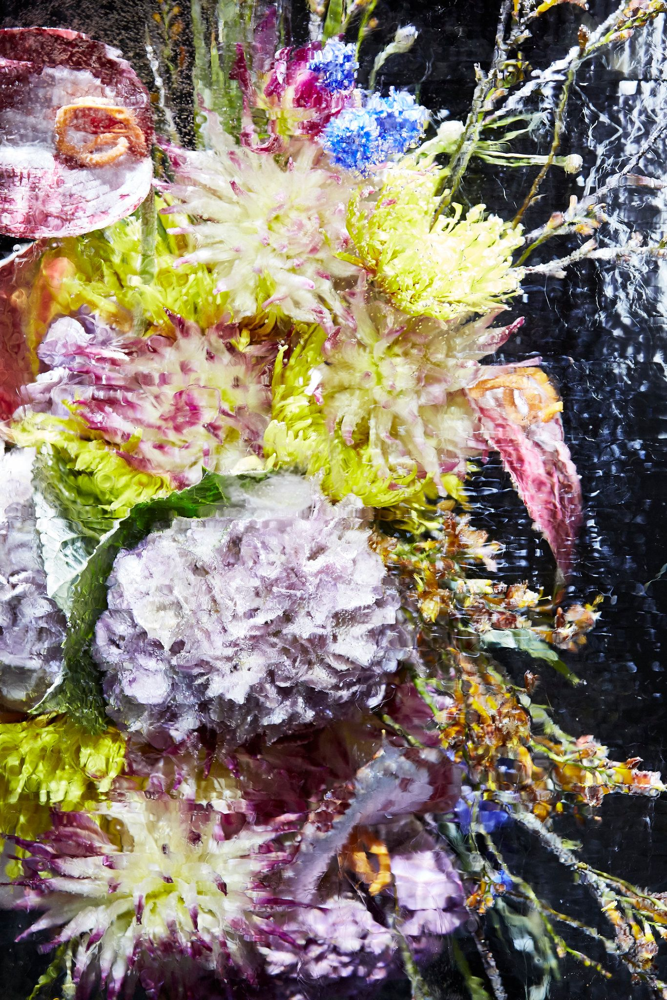 "Azuma Makoto's ""Iced Flowers"" at Dries Van Noten. Modern Flower  ArrangementsJapanese ArtistsParis Fashion WeeksBotanical ..."