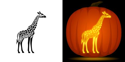 pumpkin template giraffe  Giraffe Pumpkin Stencil | Pumpkin stencil, Pumpkin carving ...