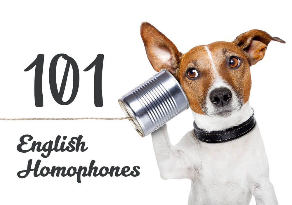 English Can Be A Confusing Language To Learn Have You Ever Come Across Two Words That Sound In 2020 Dogs Ears Infection Ear Infection Home Remedies Dog Communication