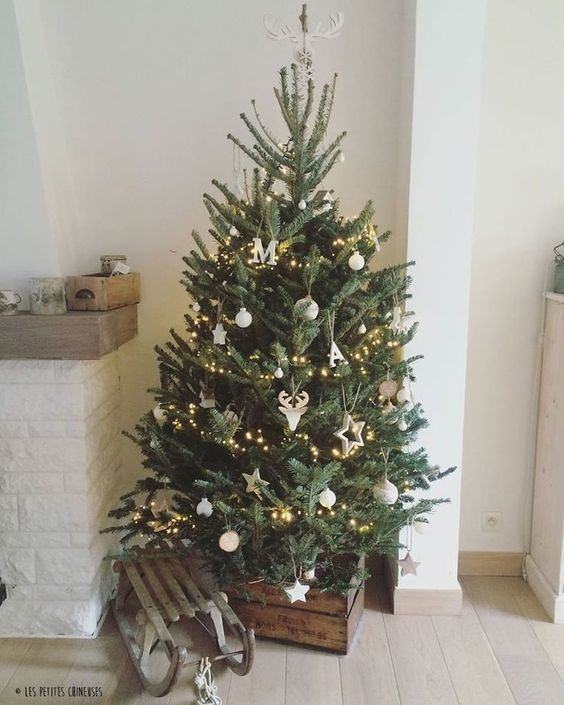 Small Yet Gorgeous Christmas Trees That'll Fit In