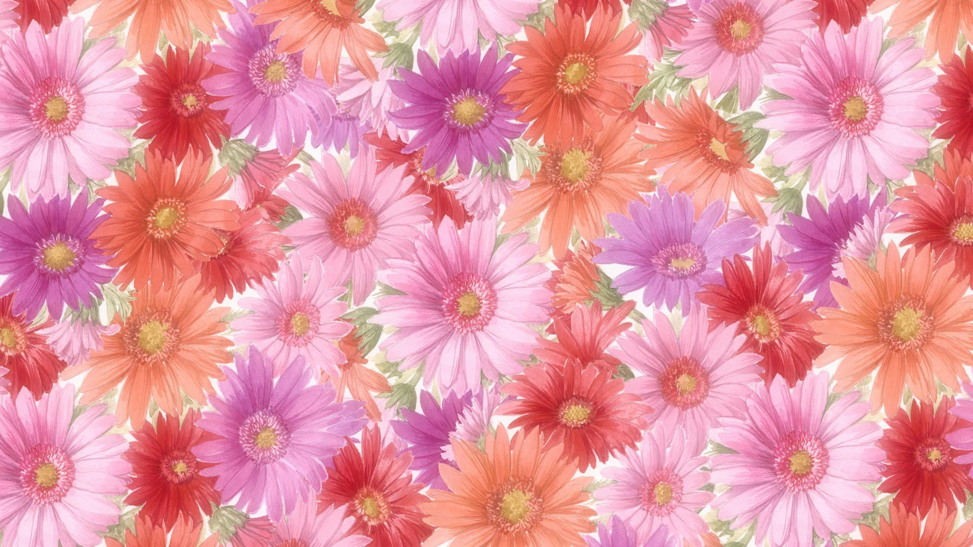Flower Wallpapers Desktop Flowers Pinterest