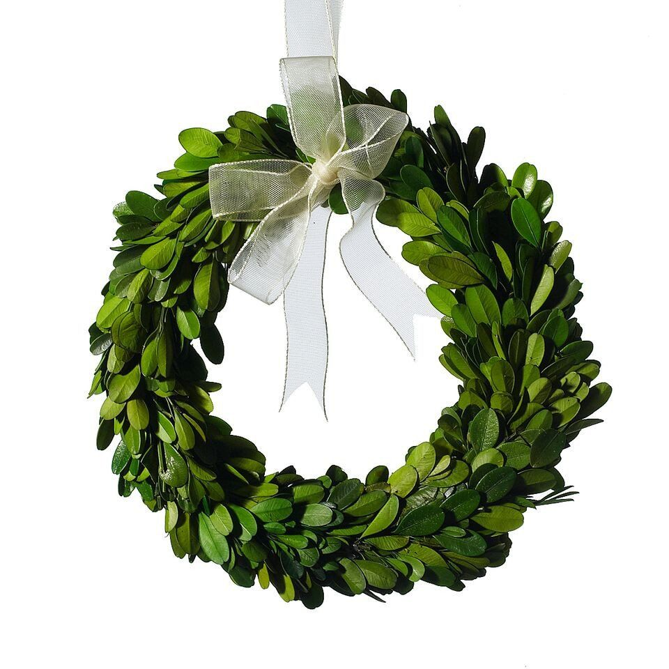 Mini Preserved Boxwood Greenery Wreath 7 5 Mini Boxwood Wreath Boxwood Wreath Decor Boxwood Wreath