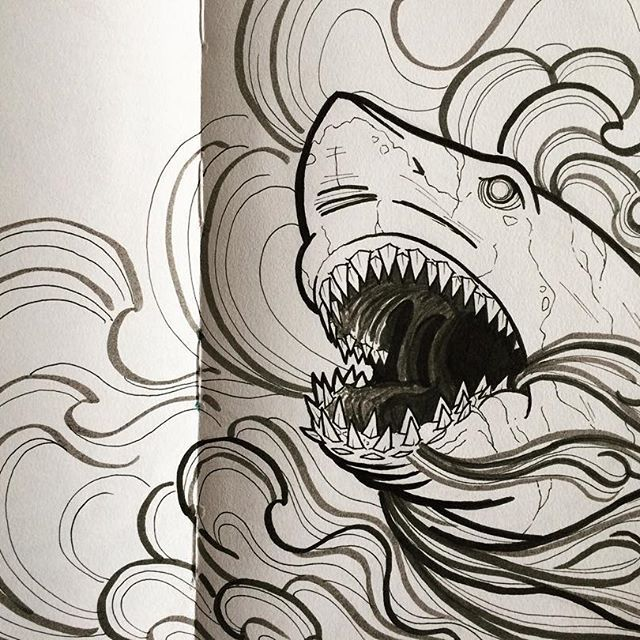 Some Ink Artdaily Drawingoftheday Drawing Shark