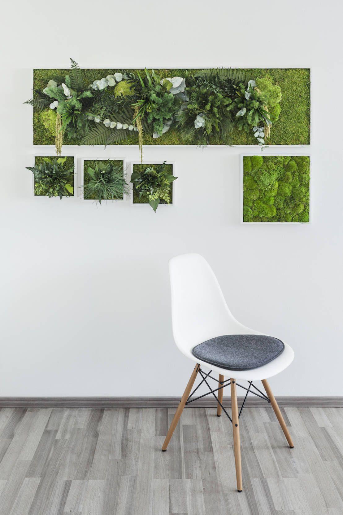 Finde Bau- und Einrichtungsprojekte von Experten für Ideen & Inspiration. Vorstellung unserer Produkte: Pflanzen- und Moosbilder von styleGREEN von FlowerArt GmbH | styleGREEN | homify