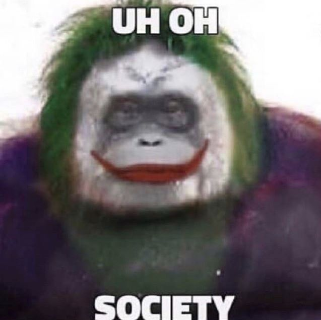 Pin On Memes Top Text Ok Buddy Retard