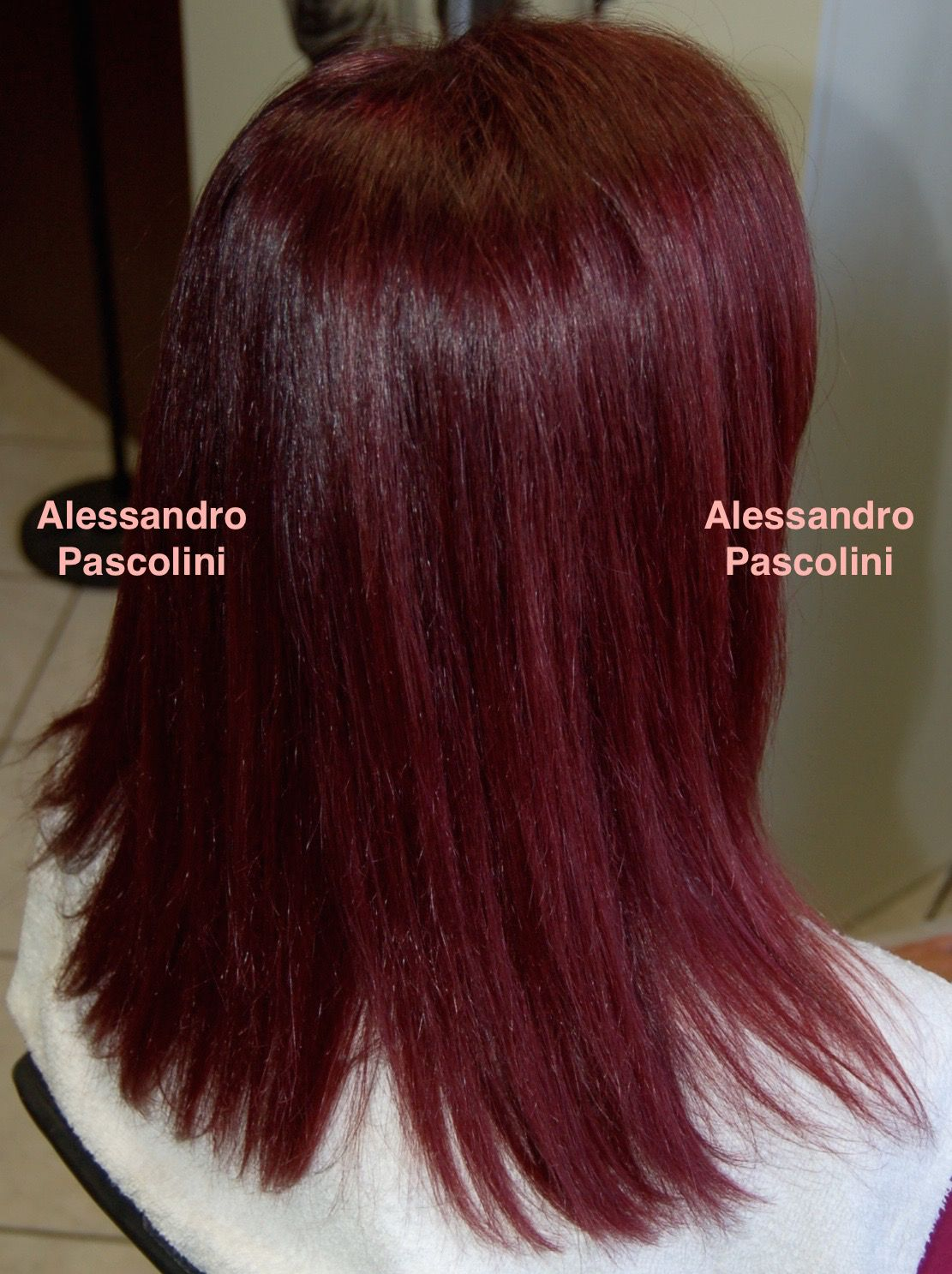 Alessandro Pascolini Pretty Plum Formula A Base Color Wella Koleston 55
