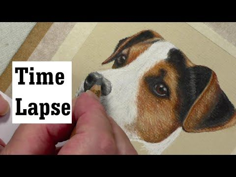 draw a jack russell pastel pencils youtube pictures