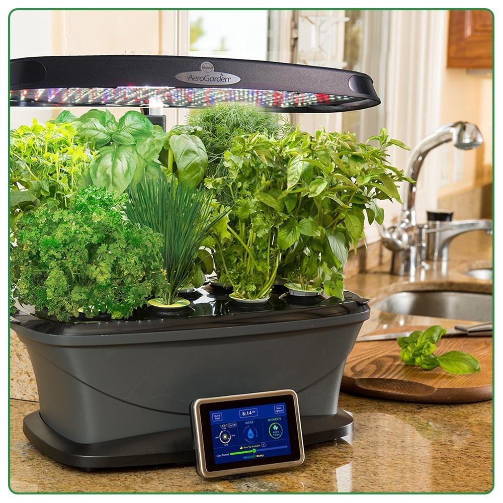 Aerogarden Harvest Wifi: Amazon.com : Miracle-Gro AeroGarden Bounty With Gourmet