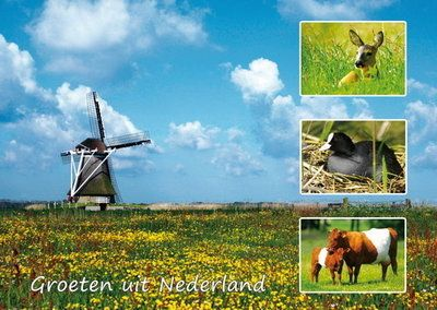 Groeten Uit Holland.Ansichtkaart Groeten Uit Nederland 004 Ansichtkaarten
