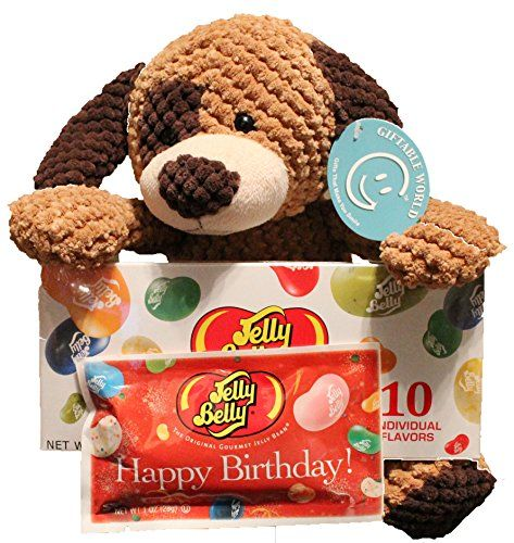 Budget Birthday Gift Set For Kids 3 Piece 11 Cuddly Puppy Dog Plush And Jelly Belly Happy Assortment Basket Gifts