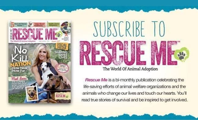 Subscribe To Rescue Me Rescue Saving Lives Homeless Dogs