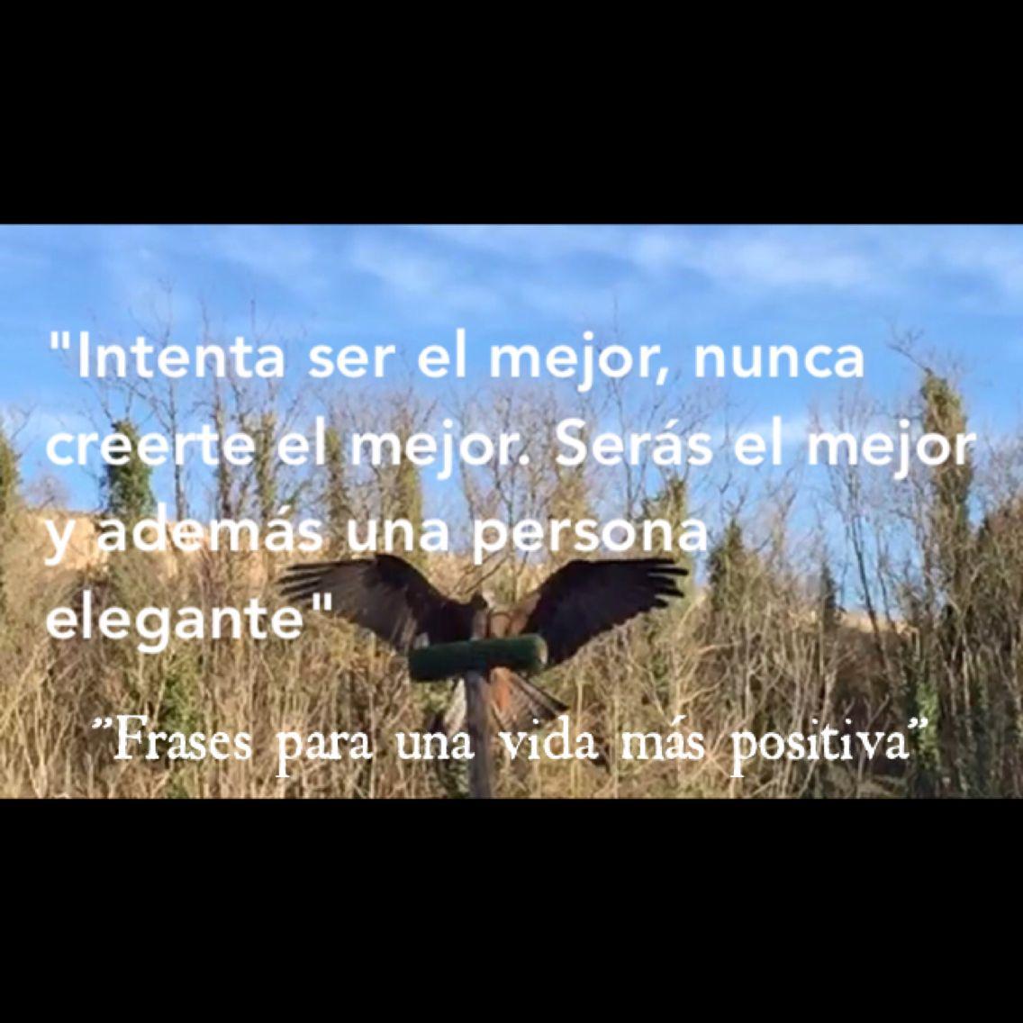 """""""Serás el mejor y además una persona elegante"""" #frases #frasespositivas #frasesparaunavidamaspositiva"""