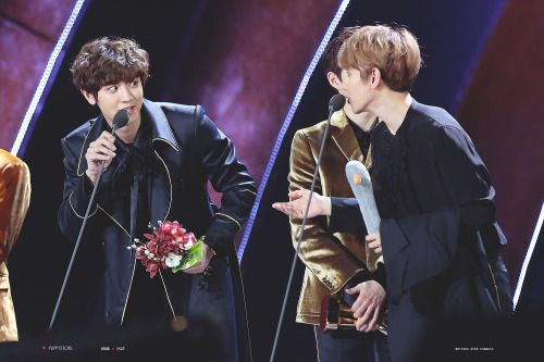 Chanyeol, Baekhyun - 170114 31st Golden Disk Awards Credit: Puppy Store. (제31회 골든디스크 어워즈)