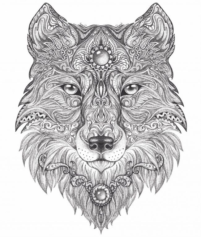 Pin By Chris Woiccak On Color In Adult Coloring Pages Colouring