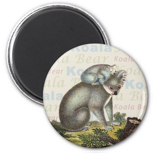 """Koala and Cub 1830 Engraving from the German children's book """"Neue Bildergalerie für die Jugend"""" (New Picture Gallery for Young People)"""