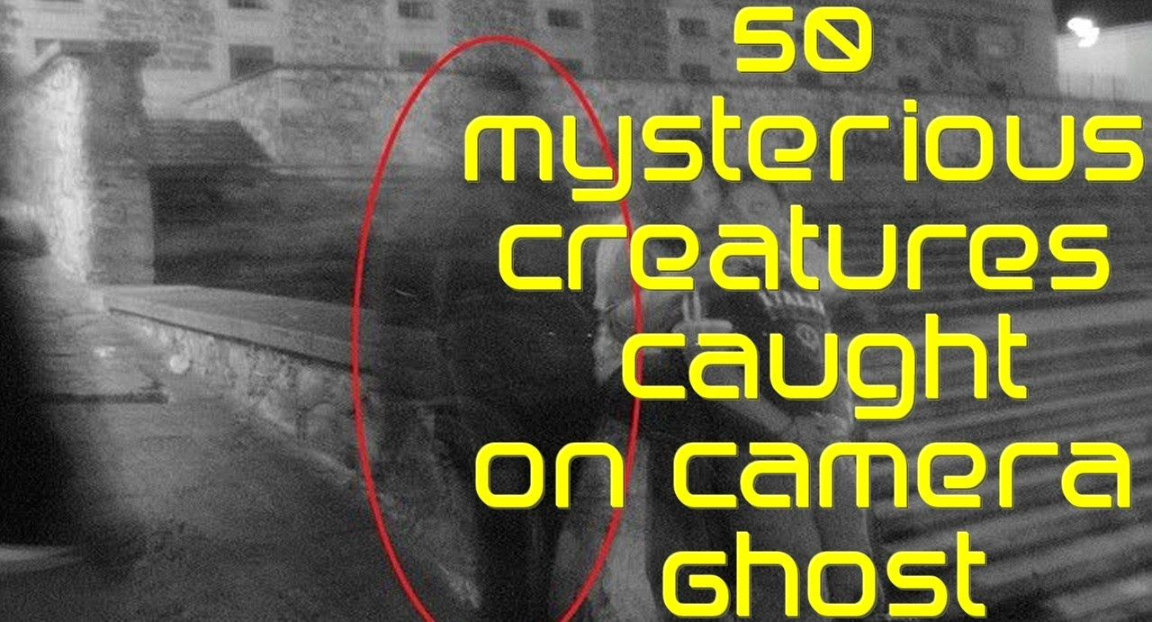 50 Mysterious Creatures Caught On Camera Ghost - Bizarre