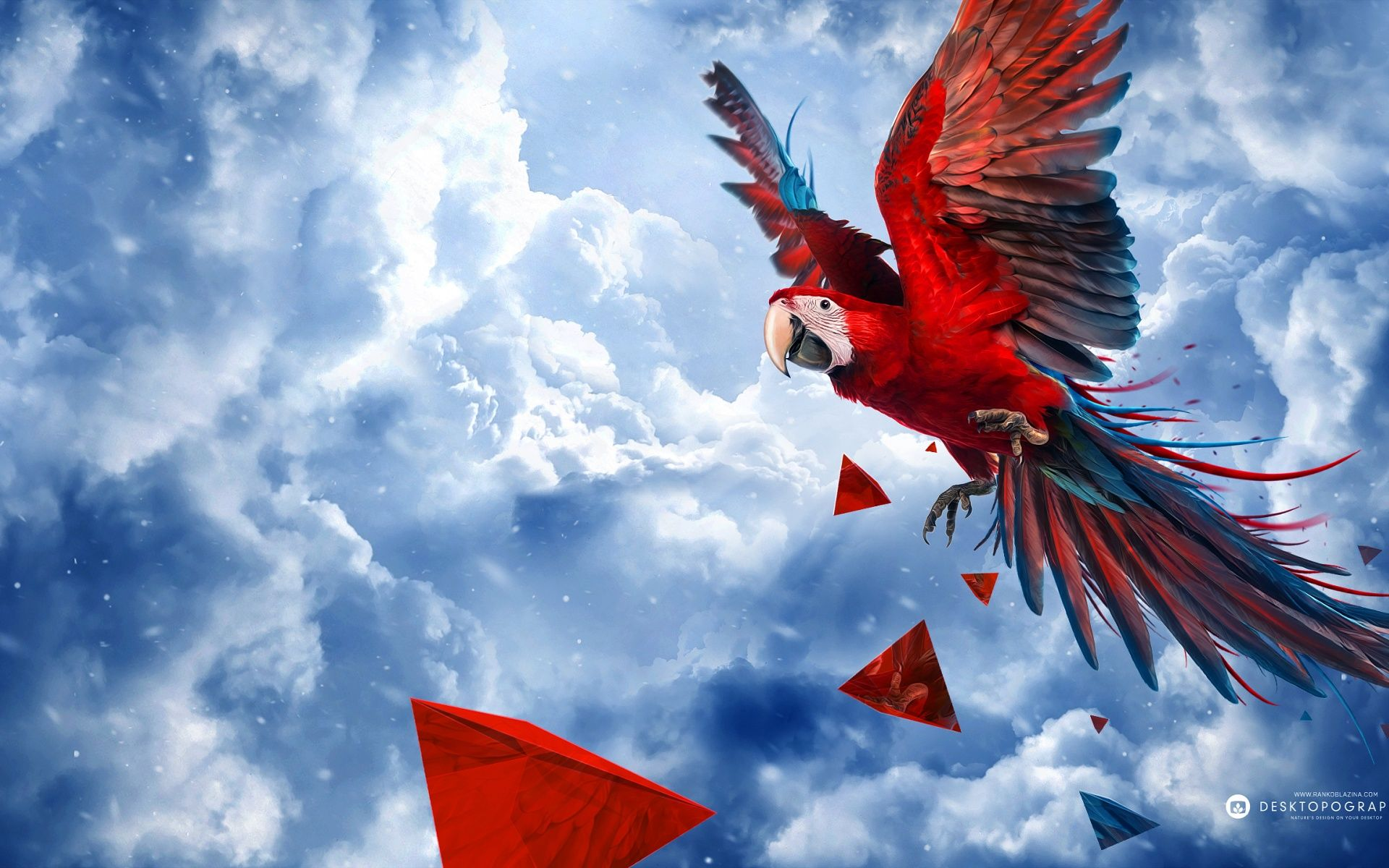 Next Generation Wallpapers Parrot Blue Sky Art Wide Jpg 1920 1200 Parrot Painting Bird Wallpaper Blue Sky Images