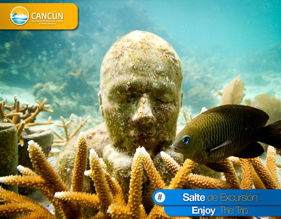 ¿Sabías que...? Recientemente se ha sumergido una nueva serie de esculturas en el área Nizuc de MUSA Museo Subacuatico de Cancun. Las nuevas piezas de Jason deCaires Taylor permiten una propagación coralina total y están exclusivamente diseñadas para filtrar los nutrientes del agua. ¡No esperes más y #SalteDeExcursión!