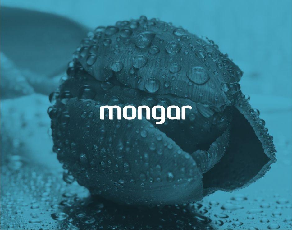 Mongar   Identidad corporativa