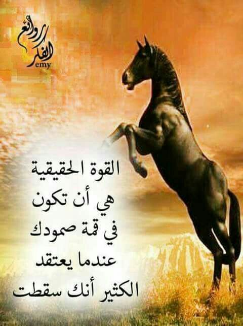 Pin By Lelean On كلمات لها معنى Cool Words Quotes Arabic Quotes