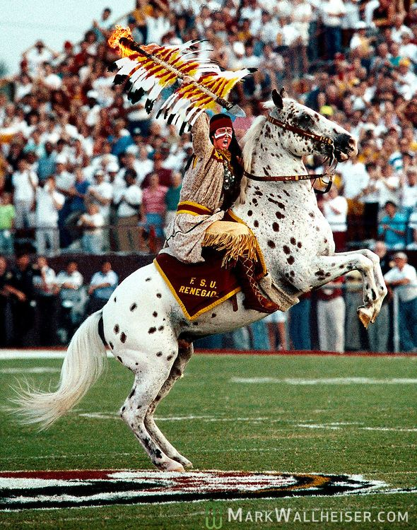 Image result for chief osceola mascot