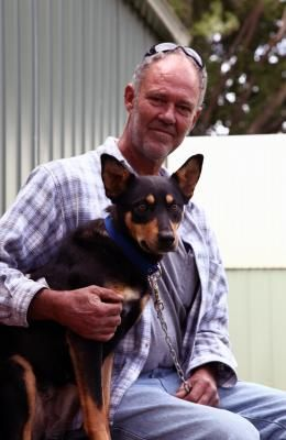 Farm Dog Found 450km From Home Farm Dogs Losing A Dog Dogs