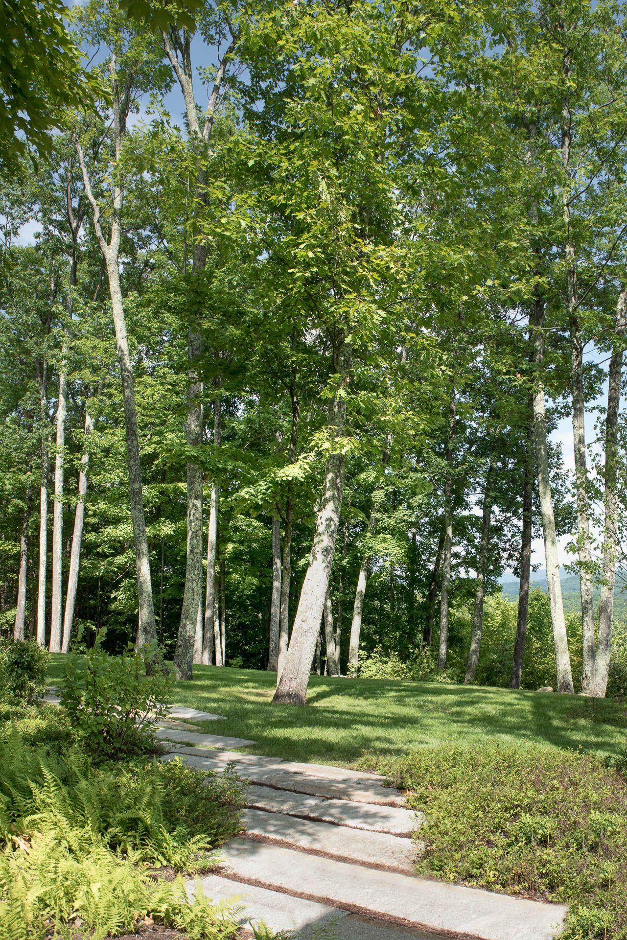 Berkshire Residence Matthew Cunningham Landscape Design Llc Garden Solutions Landscape Design Landscape Architect