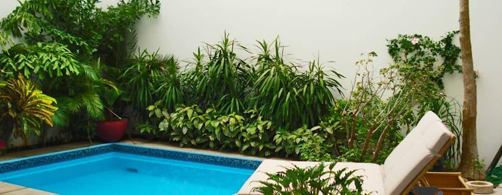 16 ideias para o seu quintal parecer de revista Quintal, Parecidas