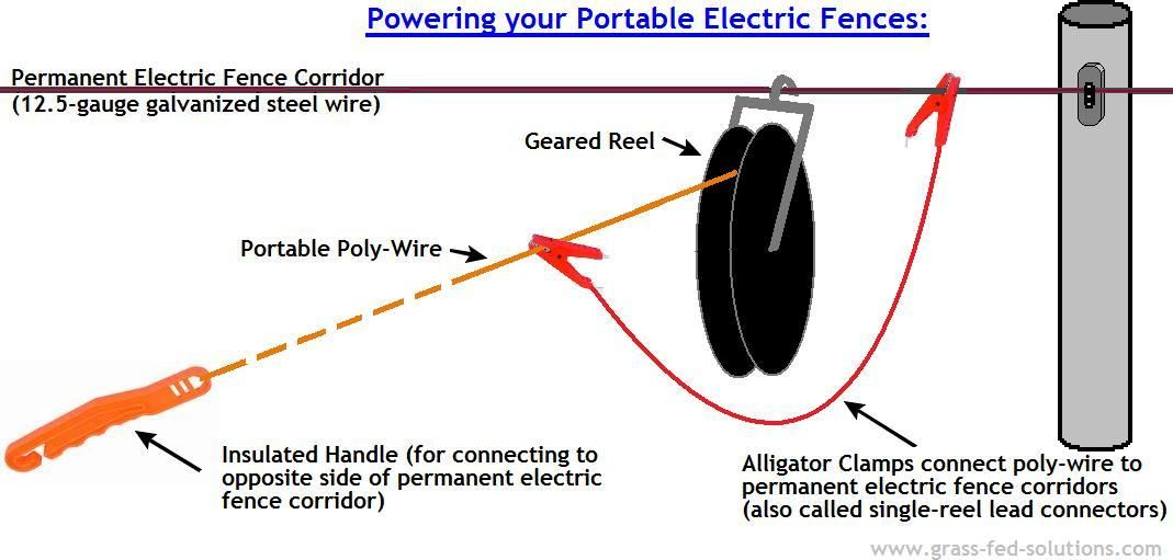 Ideal Con Uration Of Singlewire Portable Electric Fence. Ideal Con Uration Of Singlewire Portable Electric Fence Subdivisions Between Permanent Corridors Grassfedsolutions. Wiring. Wire Diagram For Electric Fence For Cattle At Scoala.co