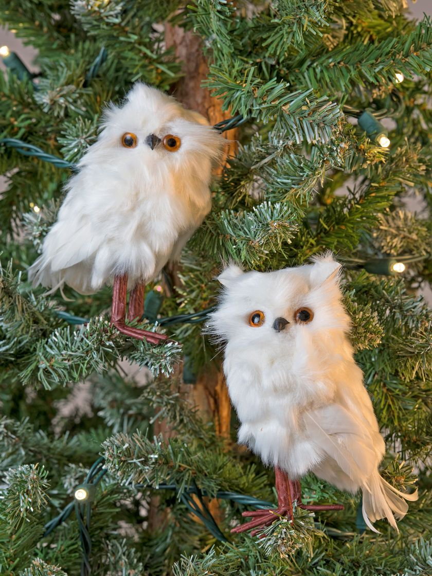 Downy Owl Christmas Ornament Owls Drawing Owl Owl Painting