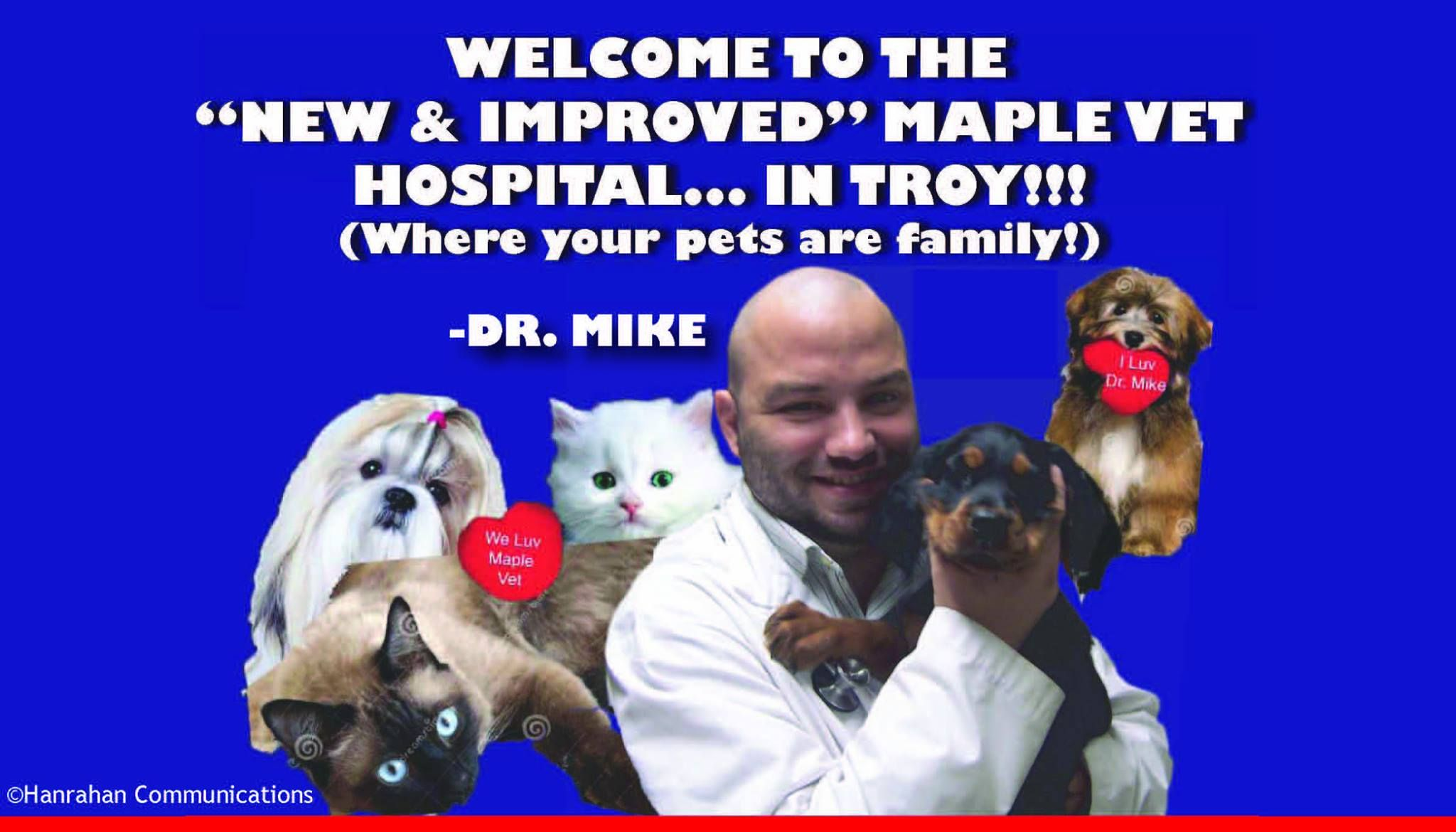 The All New Maple Vet Hospital Where Pets Are Definitely Family Vets Pets Hospital