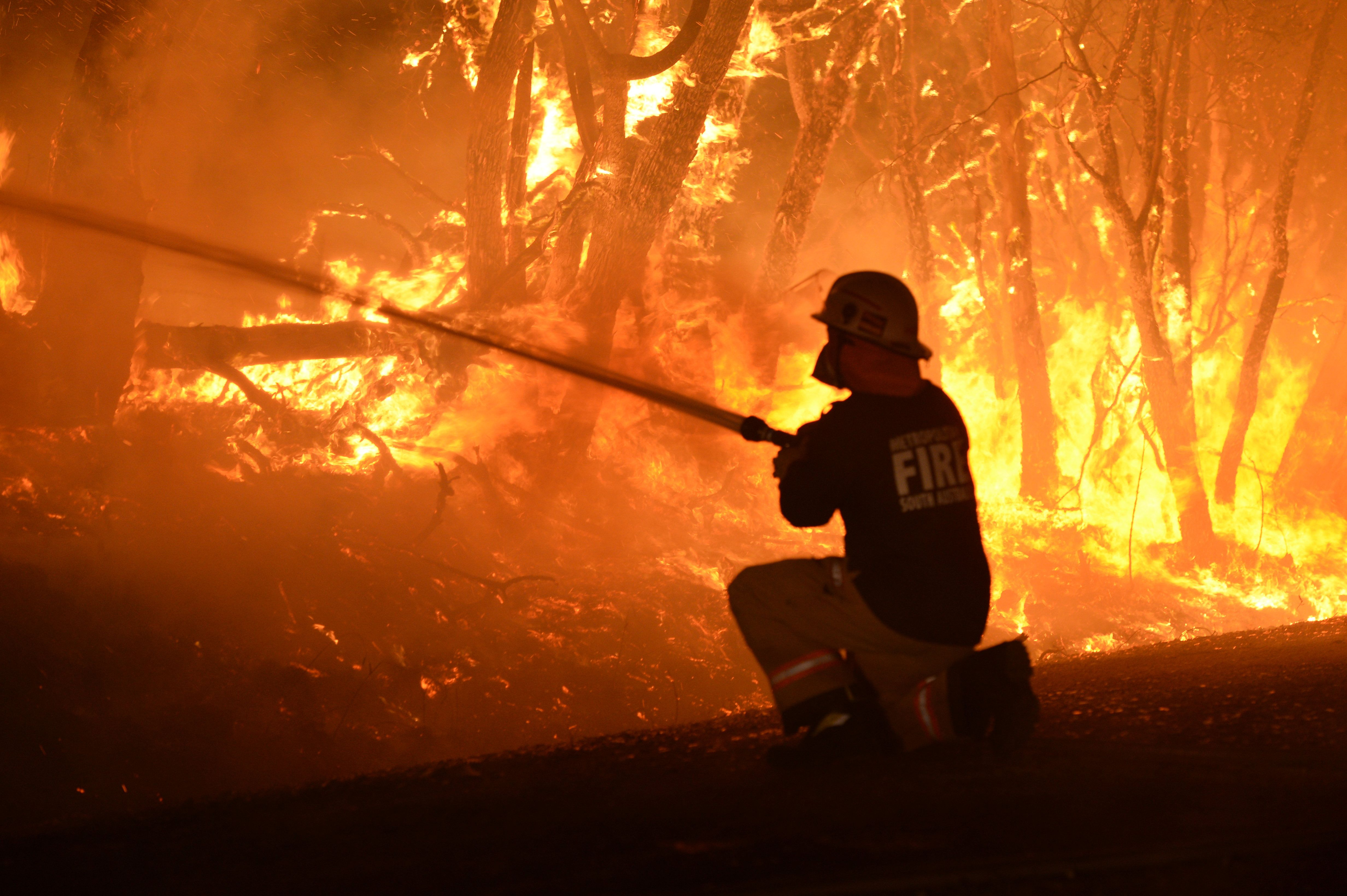 In pictures Australia wildfire reaches 'catastrophe