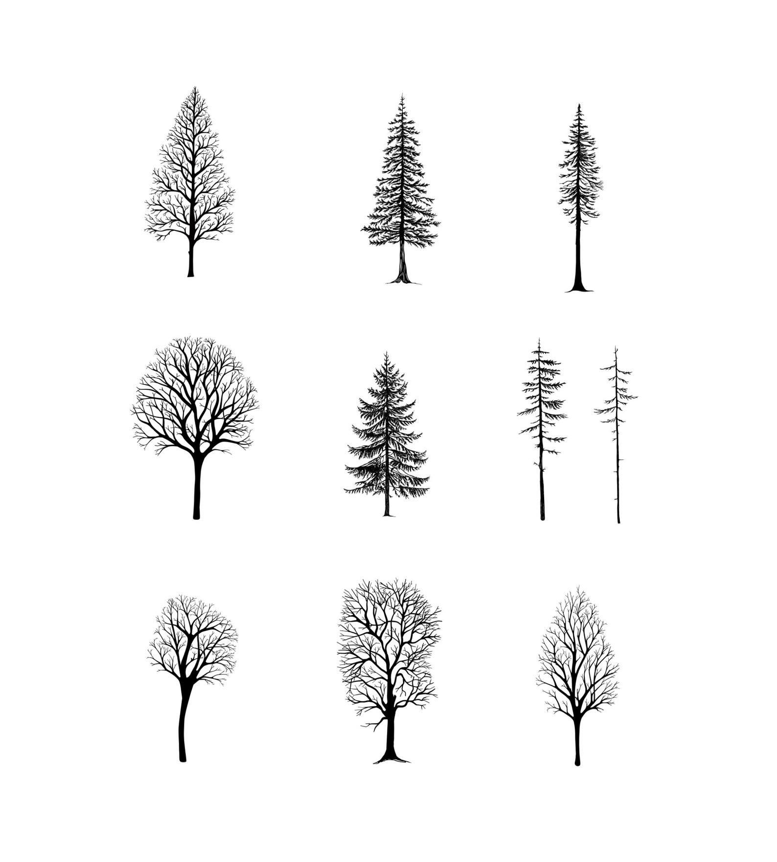 Procreate Brushset Winter Trees 10 Brushes For Illustration Greeting Cards Handlettering Lineart Stamp In 2020 Handlettering Winter Trees Hand Lettering