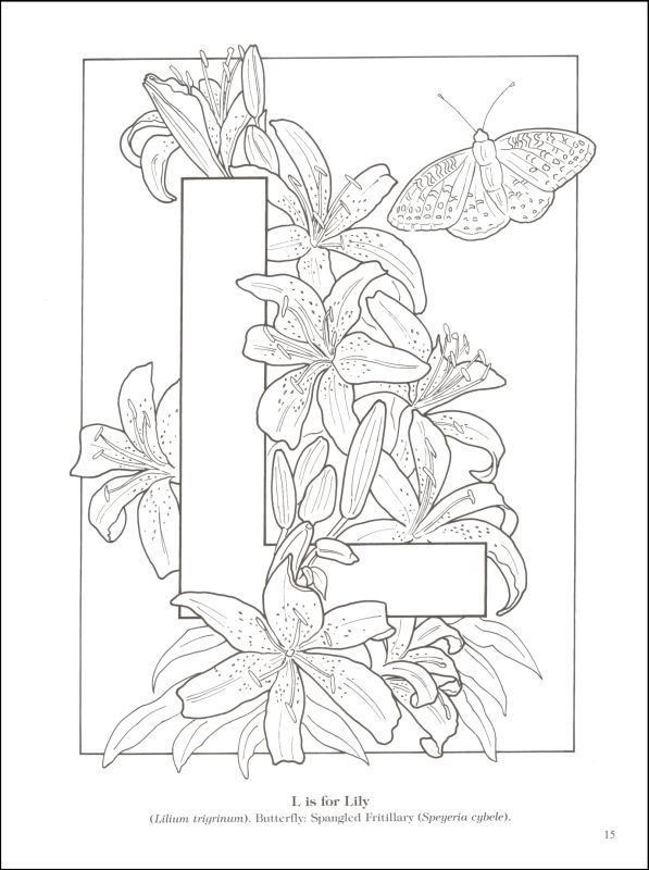 coloriage | Adult Coloring Pages | Pinterest | Coloring books and ...