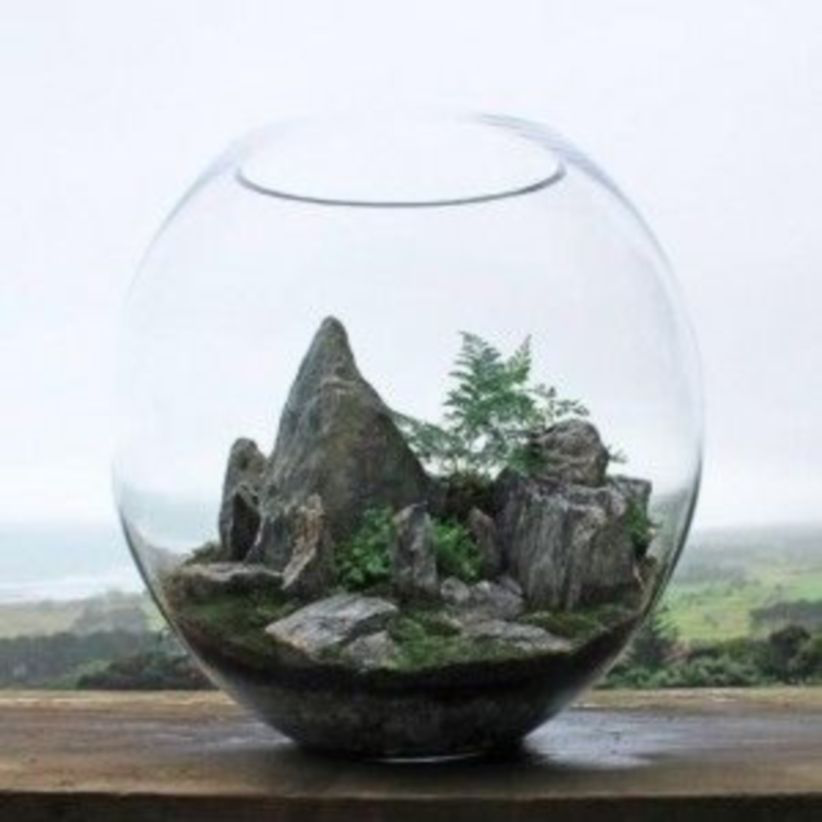 44 Stunning Diy Terrariums Design Ideas Garden terrarium