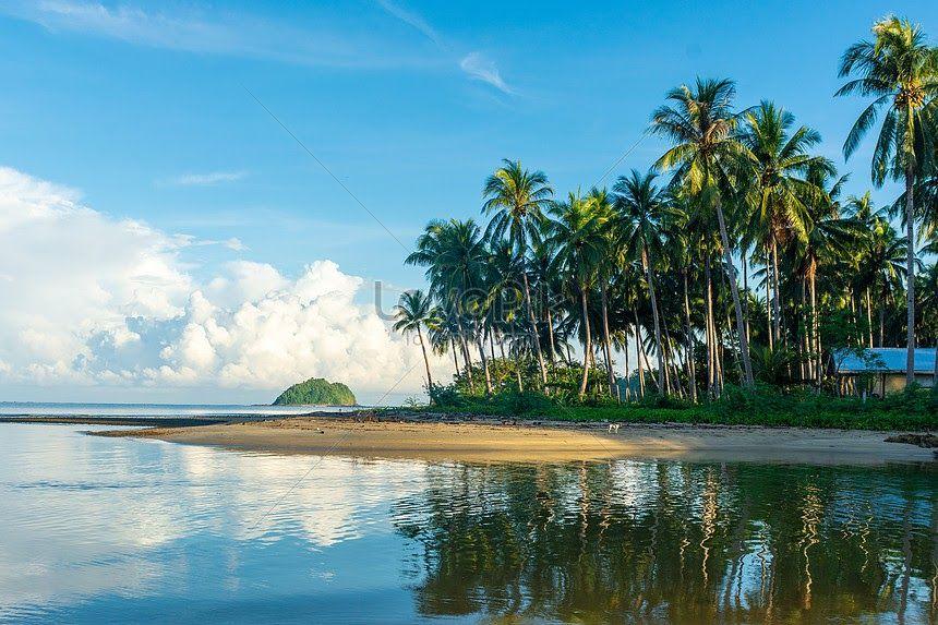 30 Pemandangan Tepi Pantai Pemandangan Tepi Laut Filipina Gambar