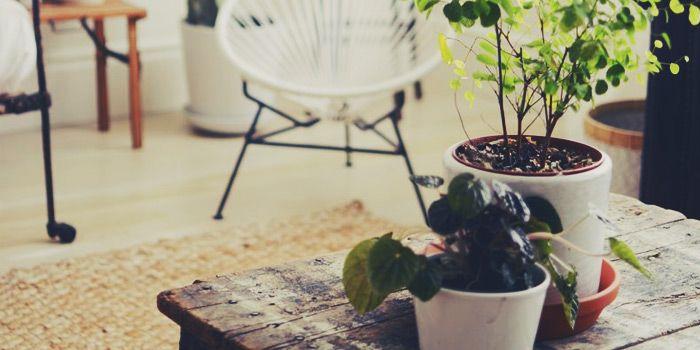 Links da semana: viagem, empreendedorismo mirim e babyliss    por Lu Ferreira | Chata de Galocha       - http://modatrade.com.br/links-da-semana-viagem-empreendedorismo-mirim-e-babyliss