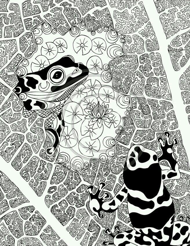 Phil Lewis | Книжка-раскраска, Рисунки для раскрашивания ...