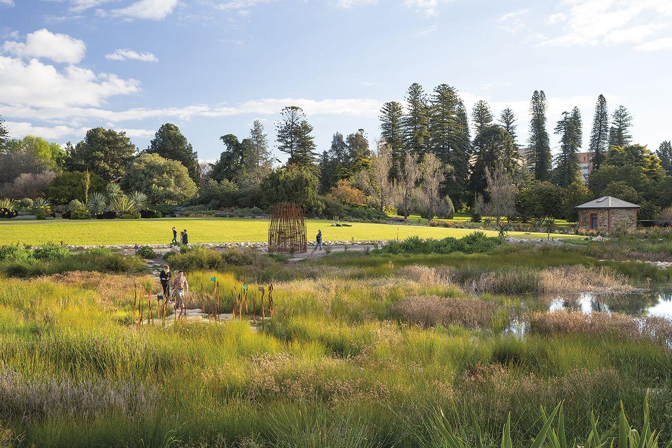 Adelaide botanic gardens wetland adelaide australia for Tcl landscape architects adelaide