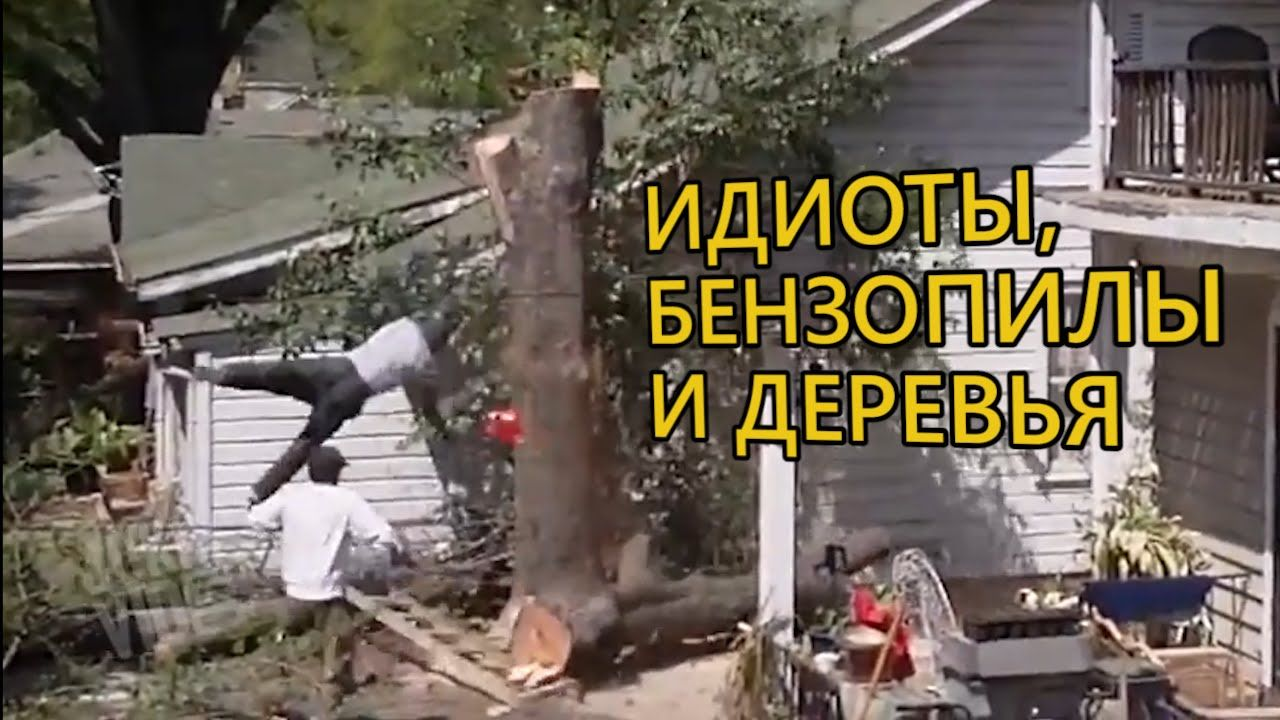 Idiots, chainsaws and trees - Fail compilation | Бензопилы