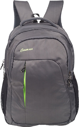 Buy Cosmus Polyester 39Litres Grey Laptop Backpack from