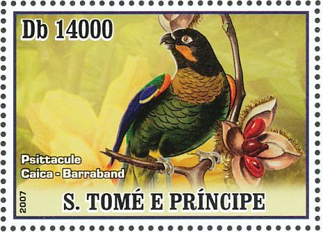 Orange-cheeked Parrot stamps - mainly images - gallery format