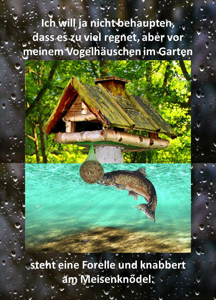 Regenwetter Lustig