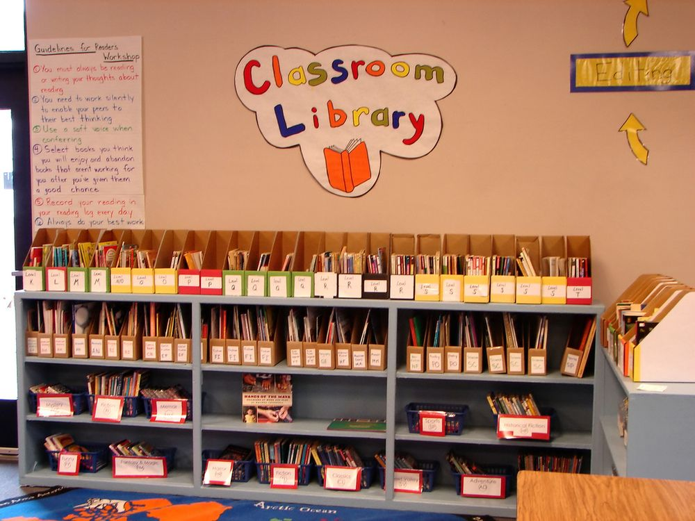 Accelerated Reading Program Enhances and Excites Students to Read -