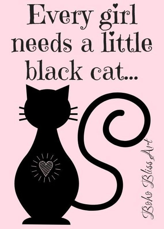 Every girl needs a little black cat... Cat Quote Wall Art