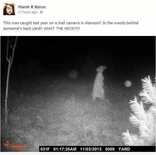 Spirit caught on trail cam?? Notice the orbs?? | Paranormal