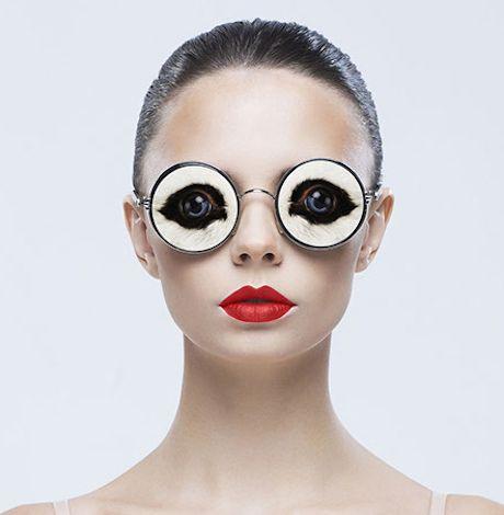 db93fa678ca4 Animal Eyed Eyewear By Jyo John Mullor