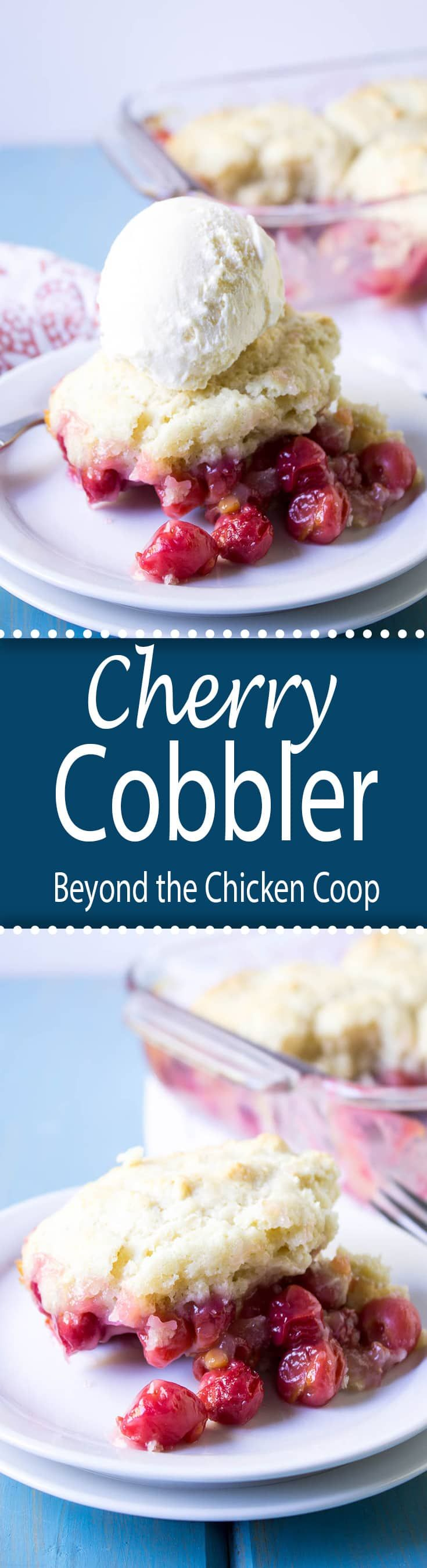Cherry Cobbler with fresh sour pie cherries.