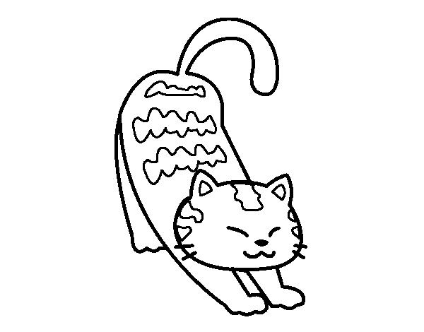 Dibujo de Gato vago para colorear  Dibujos de Animales ...