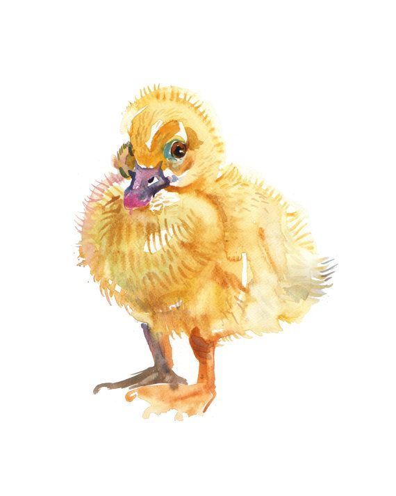 Duckling  2  Baby Duck 2    Watercolor painting   by Coconuttowers